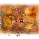 June (from a year full of color) by penn gregory