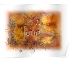 June (from a year full of color) Poster