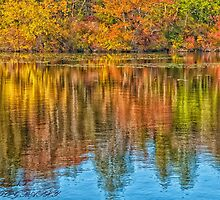 **************AUTUMN REFLECTION************** by RGHunt