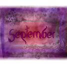 September (from a year full of color) by penn gregory