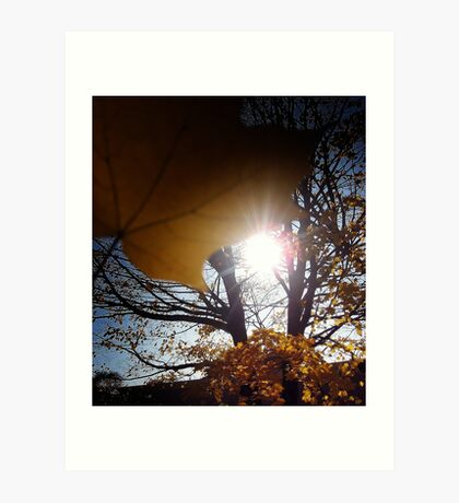 Blinded by the light Art Print