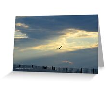 Seagull | Fire Island, New York  Greeting Card