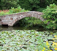 Bridge over pond by susanmcm