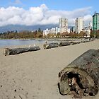The Sands of English Beach, Vancouver City, Canada  by Carole-Anne
