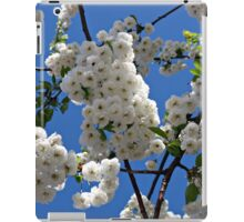 White Blossoms of Spring iPad Case/Skin