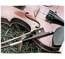 Natural Violin Poster