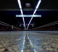 The Walkway by Stephen Burke