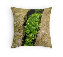 Life In Stone Throw Pillow