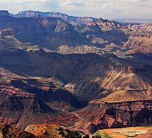 Grand Canyon by Julia Washburn