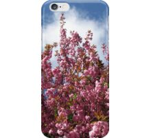 Blue Sky and Pink Blossoms iPhone Case/Skin