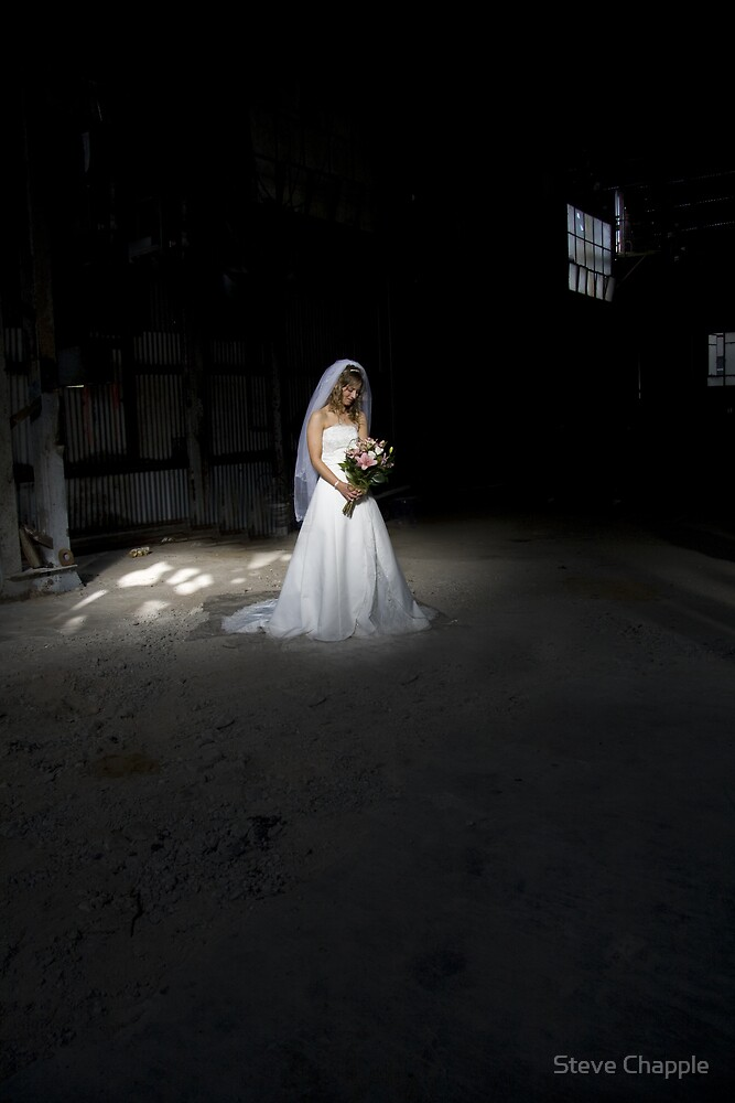 The Bride by Steve Chapple