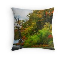 """ The First Bare "" Throw Pillow"