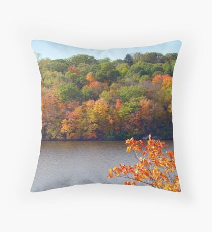Mississippi River and Colours Throw Pillow