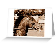 the dark horse Greeting Card