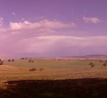 Rainbow Watching Over Golden Fields Panorama. by Andrew  Campbell