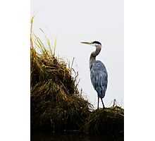 Ever on Guard Photographic Print