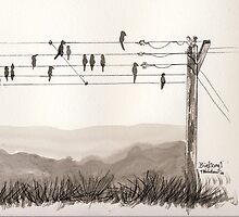 Birds on the wire by Trudy  Nicholson