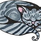 Grey Tabby by Amy-Elyse Neer