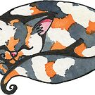 Calico Kitty by Amy-Elyse Neer