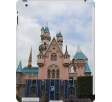 Backside of SBC iPad Case/Skin