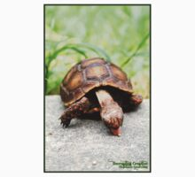 Red-footed tortoise Baby Tee