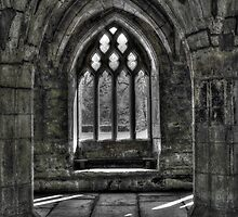 Chapter House - Valle Crucis Abbey, Llangollen by Emma Wright