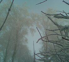 Snow magic by Sankofa