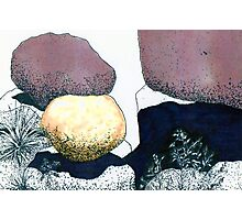 Boulders Composed Artistically Photographic Print
