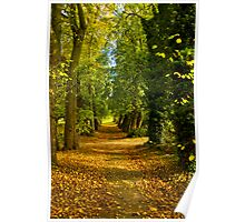 Autumn Path Poster