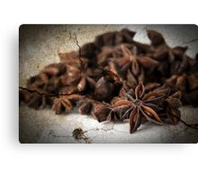 Textured Spice Canvas Print