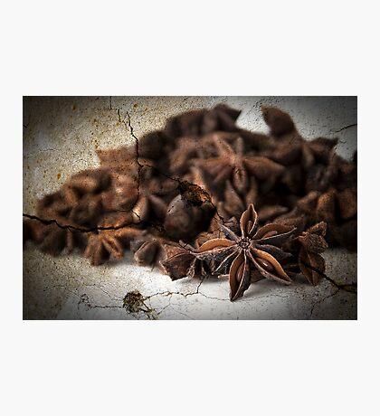 Textured Spice Photographic Print