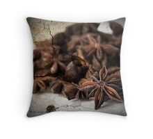 Textured Spice Throw Pillow