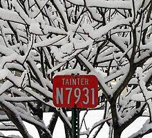 fire number/snowy twigs by Lynne Prestebak
