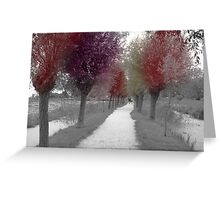 Colours of trees Greeting Card