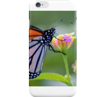 uralba  butterfly  iPhone Case/Skin