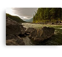 Serene River in the Forest Canvas Print