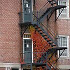 Fall Stairway with Doors by brooke1429