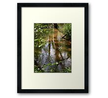 Reflections In A Sandy Stream Framed Print