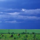 Storm Approaching by Marlene Hielema