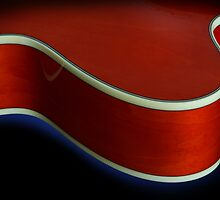 Ibanez AF75 Hollowbody Electric Guitar Upper Bout Detail by koping