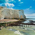 Seaford Cliffs by DonDavisUK