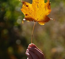 To the Golden Leaf  by Vonnie Murfin