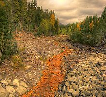 Waiting for the Spring Runoff by bhughs
