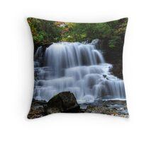 Lower Decew Falls Throw Pillow