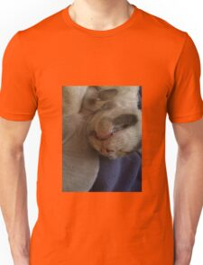 Kitty Teeth Unisex T-Shirt