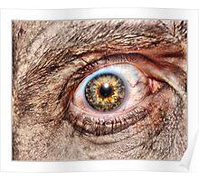 eye - self portrait Poster