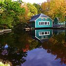 Mill Pond Reflections  - Lyman Maine by MaryinMaine