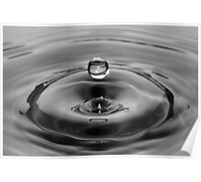 Water Drop Black and White Poster