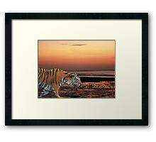 Twilight Tiger Framed Print