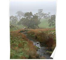 Misty Creek ~ Mount Barker Poster